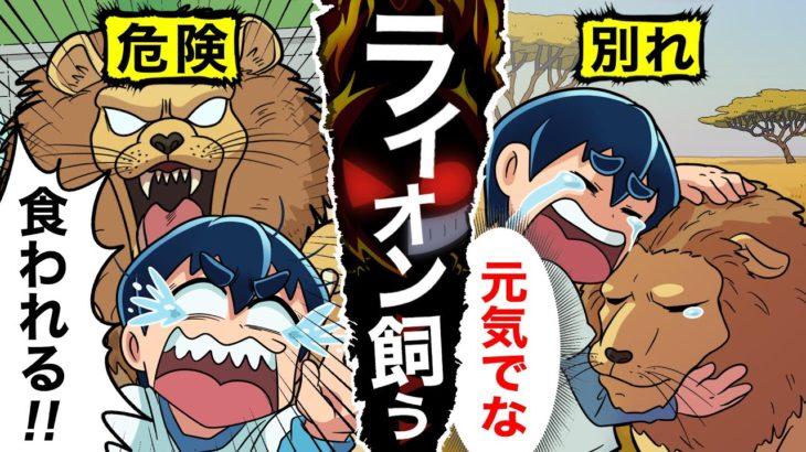 【アニメ】ライオンを飼うとどうなるのか?