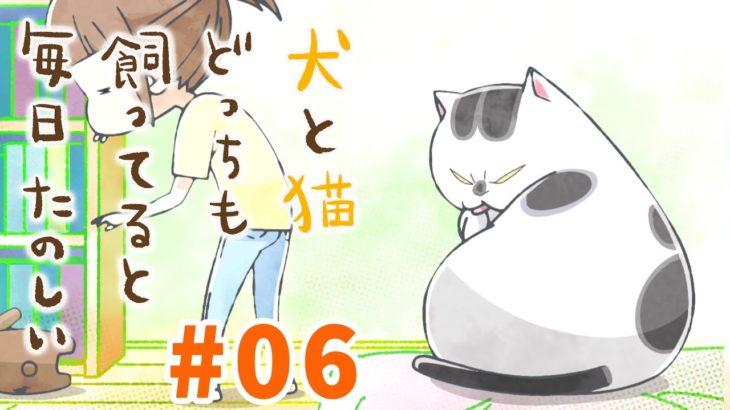 【第6話】犬と猫どっちも飼ってると毎日たのしい 2021年4/30(金)まで!【公式アニメ】