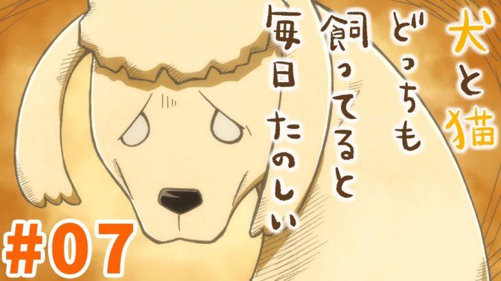 【第7話】犬と猫どっちも飼ってると毎日たのしい 2021年4/30(金)まで!【公式アニメ】