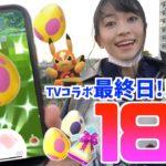TVアニメコラボの結果発表!!最終日に10km&7kmたまご18連で色違いを狙った結果!!【ポケモンGO】