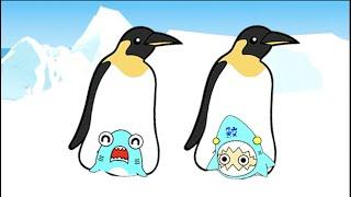 【南極の冒険アニメ】皇帝ペンギンとヒョウアザラシとシャチに襲われた!?サメニンジャーのアニメ!