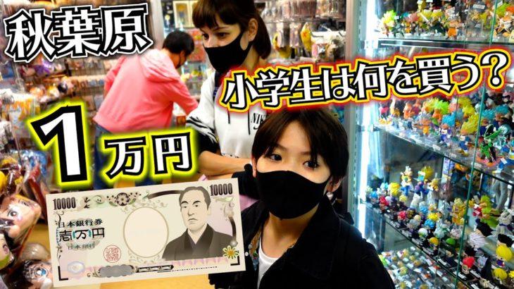 アニメ 漫画系 鬼滅の刃など置いてるお店でお買い物 1万円企画!秋葉原で小学生は何を買う?好きな物何でも買っていいよ!