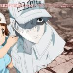 TVアニメ第2期「はたらく細胞!!」キャラクター別CM・白血球(好中球)ver.【期間限定】