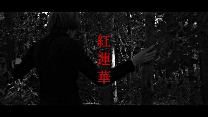 【男性ver】LiSA / 紅蓮華【covered by vitadolce】TVアニメ『鬼滅の刃』OP