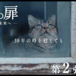 映画『夏への扉 ―キミのいる未来へ―』第2弾特報