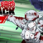 「はたらく細胞BLACK」第1弾 特別予告PV│2021年1月9日放送開始!
