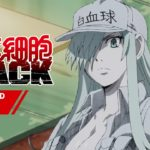 TVアニメ「はたらく細胞BLACK」Blu-ray&DVD第1巻発売告知CM【2月24日(水)発売!】