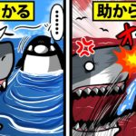 【アニメ】巨大なサメに遭遇したらどうすればいいのか?
