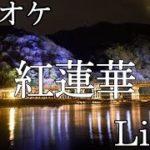 【カラオケ音源】紅蓮華/LiSA  鬼滅の刃主題歌