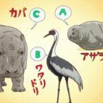 【イルカのベース編】TVアニメ「天地創造デザイン部」セレクションPV毎日公開!!【1月新番組】
