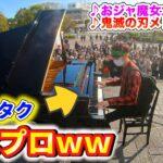 【ピアノドッキリ】もしも音楽祭を木の陰から見つめるアニメオタクがプロのピアニストだったら?(♪おジャ魔女カーニバル)